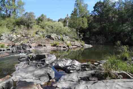river pond