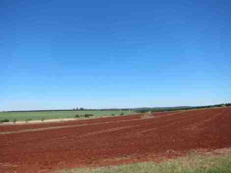Bundaberg soil