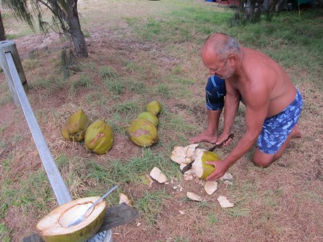 Henry processing the coconuts