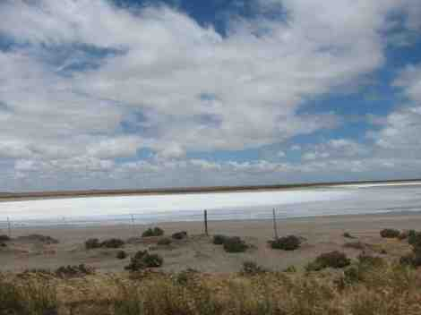 Salt flats in the Coorong
